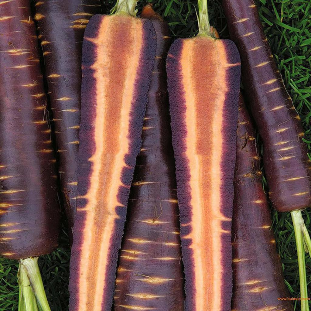Фиолетовый овощ: перечень, особые свойства, польза для организма