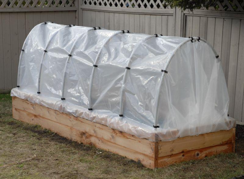 Выращиваем помидоры в парнике: 10 советов для начинающих