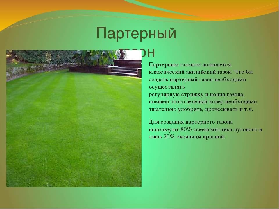 Как правильно уложить искусственный газон?