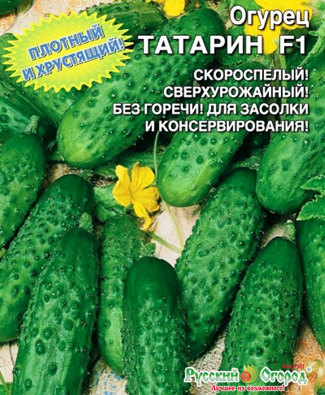Огурец пучковое великолепие f1: подробное описание и характеристика урожайного гибрида корнишонов