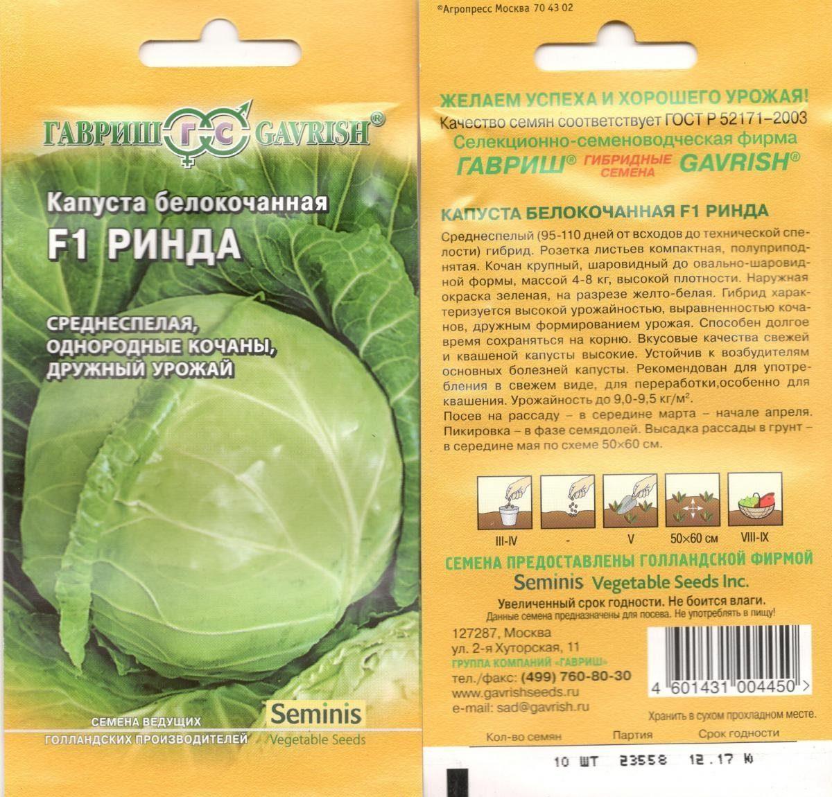 Капуста ринда f1: характеристика и описание гибрида, выращивание и уход