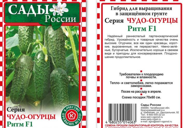 Огурец эколь f1: описание сорта и особенности выращивания