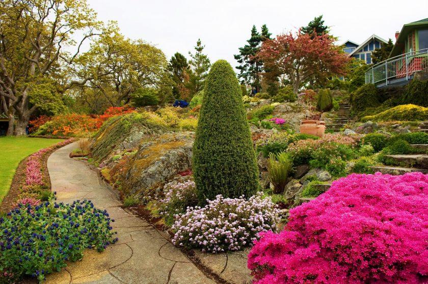Растения в ландшафтном дизайне (64 фото): названия группы с хвойными, сочетание хосты и гейхеры, схемы посадки в японском стиле