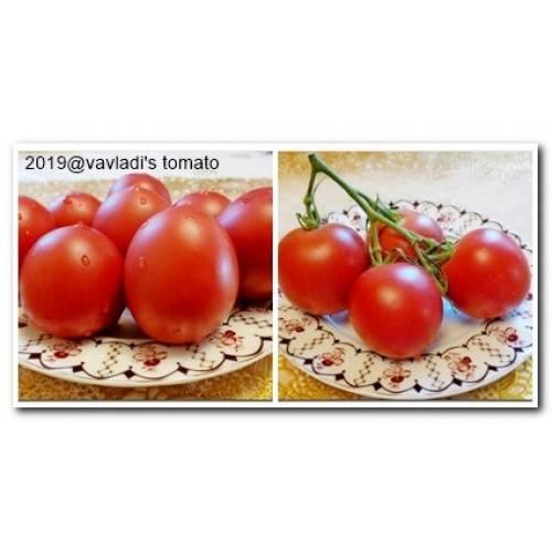 Шикарный сорт из поволжья — томат сызранская пипочка: характеристики и описание