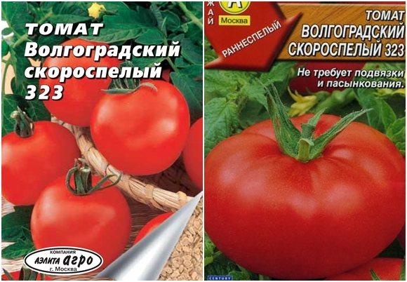 """Томат """"полярный скороспелый"""": отзывы, фото, урожайность"""
