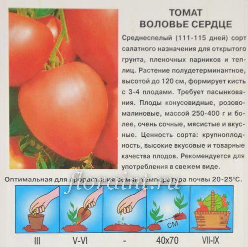 Характеристика сорта томат полонез и его описание