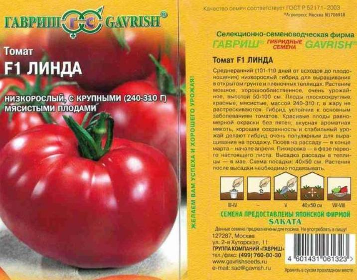 Лучшие сорта и гибриды томатов: характеристики, урожайность, сорта для открытого грунта и теплиц