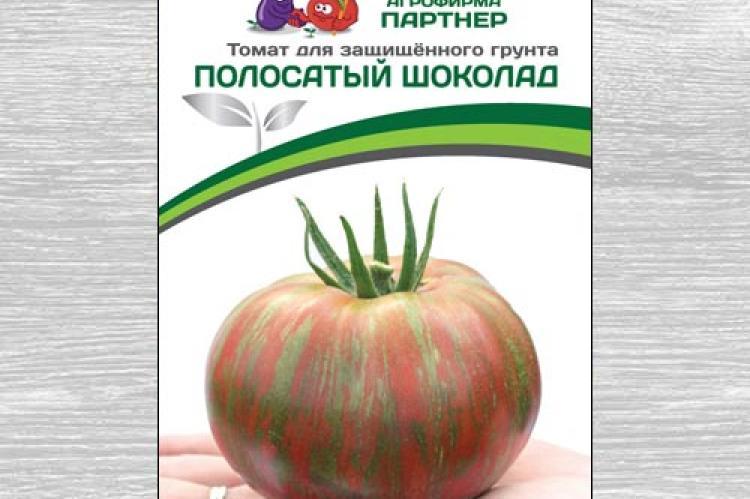 Сорт от отечественных специалистов — томат полосатый шоколад: описание помидоров и характеристики