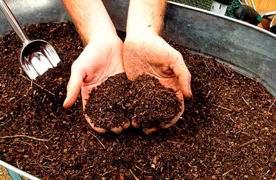 Когда вносить навоз в почву – весной или осенью, чтобы успел разложиться