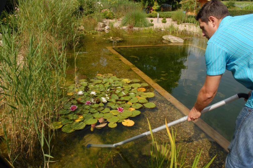 Очистка водоемов — как очистить любой водоем своими руками. 80 фото самых простых и эффективных решений