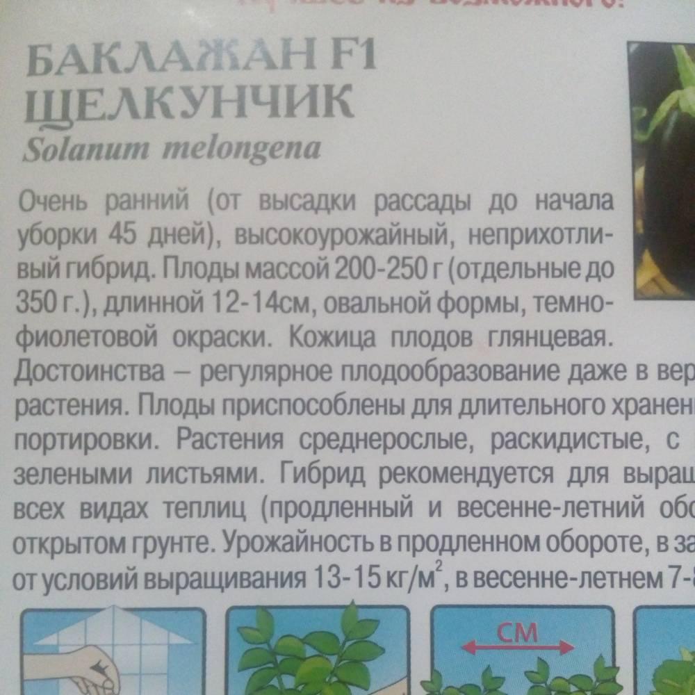 Баклажан щелкунчик f1: отзывы, фото урожая, описание неприхотливого в уходе гибрида, посадка на рассаду, особенности выращивания,урожайность