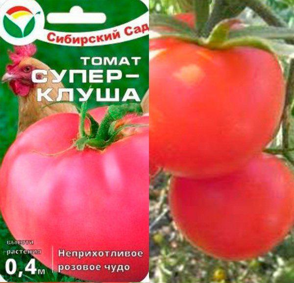 Томат клуша: описание сорта, особенности выращивания и ухода