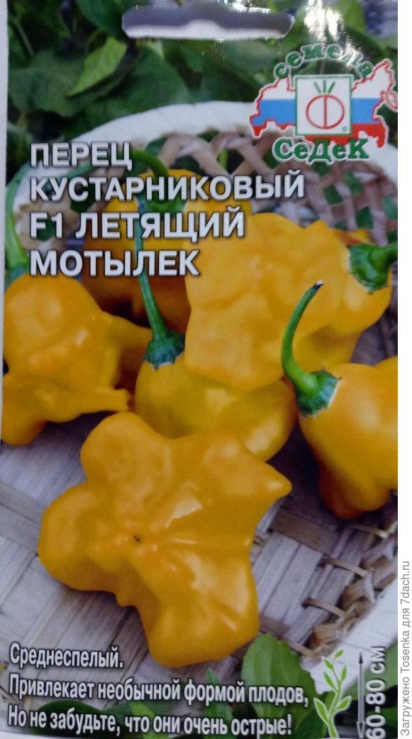 Красный перец колокольчик – чем привлекает южноамериканский сорт?
