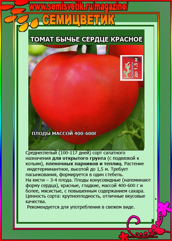 """Томат """"медово сахарный"""": характеристика и описание сорта помидор, выращивание, достоинства и недостатки, правильное хранение и борьба с вредителями русский фермер"""