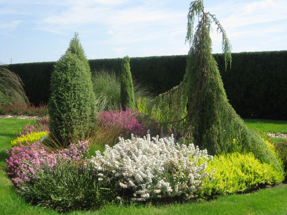 Английский сад в ландшафтном дизайне, фото, подбор растений