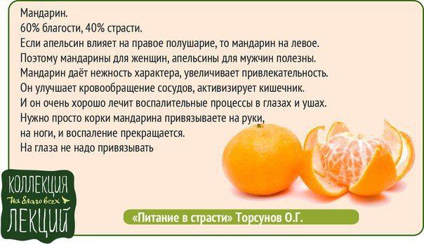 Мандарины: в чем уникальная польза этих плодов для организма?