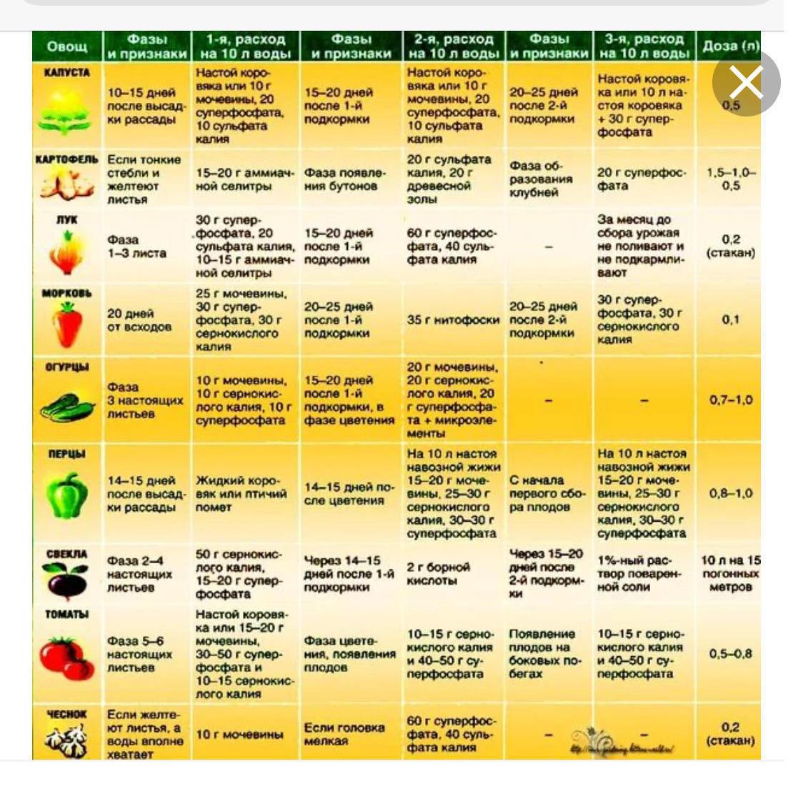 Как подкормить рассаду перца золой правильно