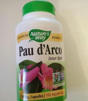 Кора муравьиного дерева: полезные свойства и противопоказания для организма человека, при беременности, для мужчин