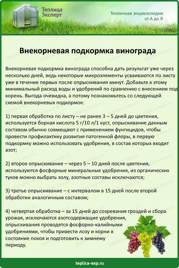 Когда и чем подкормить розы, чтобы получить обильноцветущие и здоровые кусты: 5 основных сезонных подкормок на supersadovnik.ru