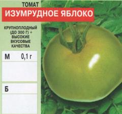 Штамбовые сорта томатов с описанием, характеристикой и отзывами, а также особенности их выращивания