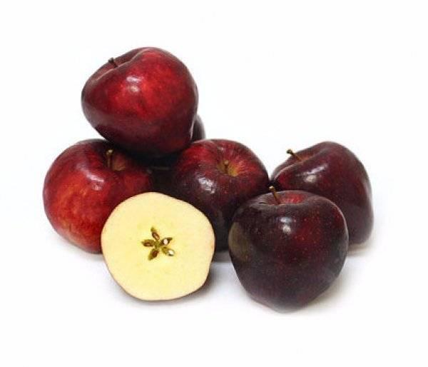 Яблоня ред делишес: фото и описание сорта, отзывы