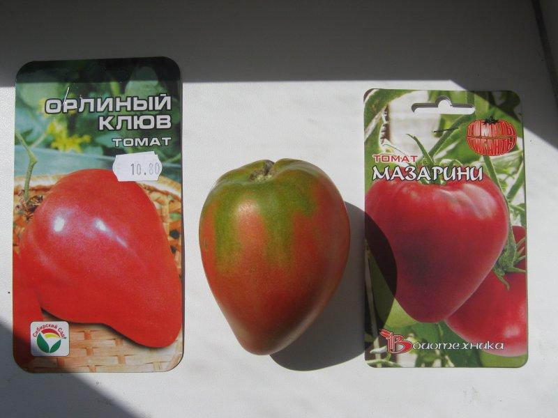Выращивание томата орлиный клюв