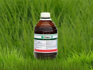 Инструкция по применению и состав гербицида гонор, дозировка и аналоги