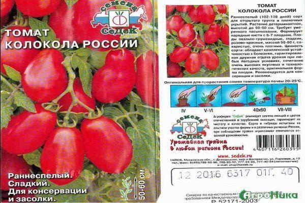Описание ароматного томата Колокола России и рекомендации по выращиванию сорта