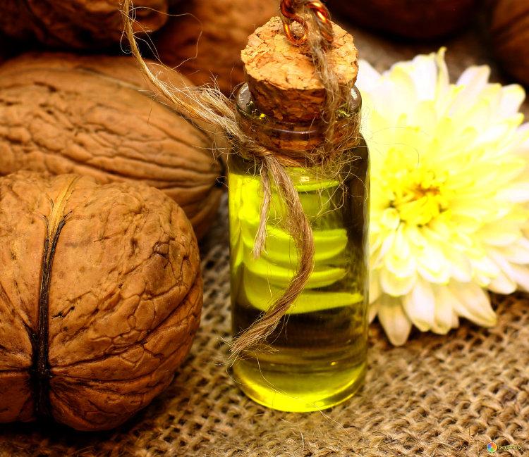 Листья грецкого ореха: применение в народной медицине, лечебные и полезные свойства, польза орехового масла