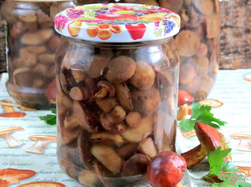 Маринованные маслята на зиму – самый вкусный рецепт