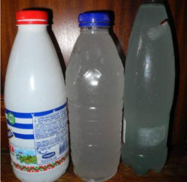 Березовый сок в домашних условиях - рецепты приготовления для консервации и хранение
