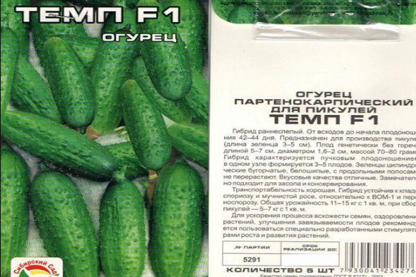 Описание огурцов сорта Муму f1, выращивание и уход за гибридом
