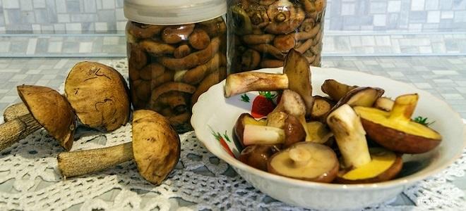 Как мариновать грибы подосиновики и подберезовики: способы и рецепты (+18 фото)