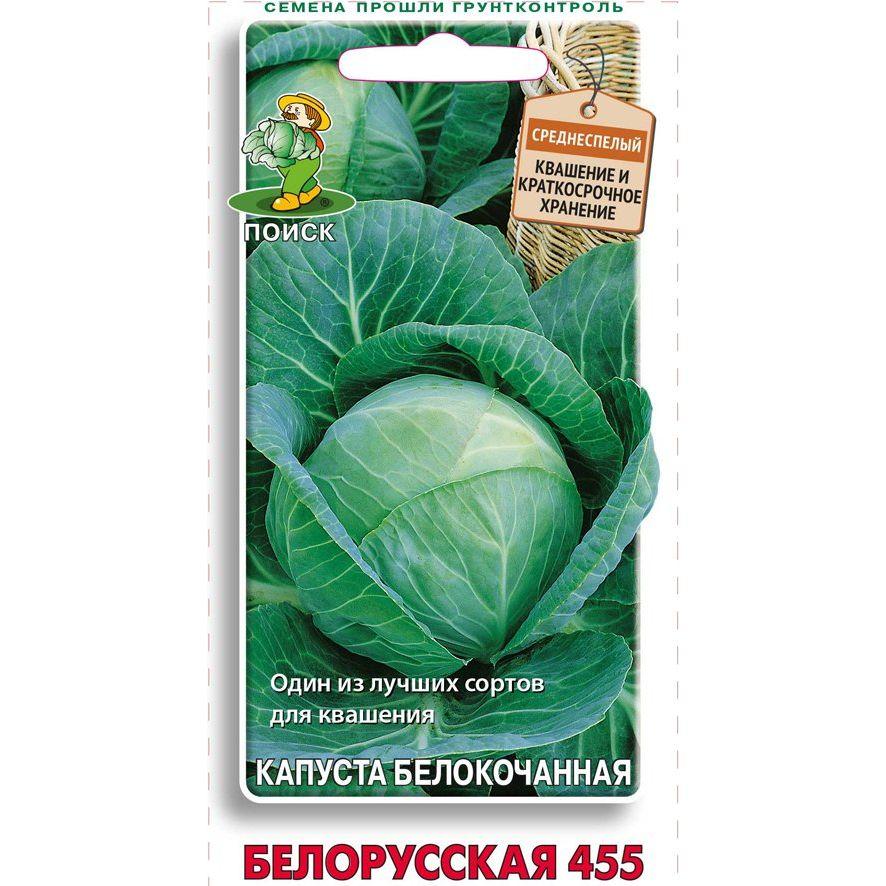 Капуста белорусская: описание сорта, фото, отзывы опытных огородников, особенности выращивания и урожайность