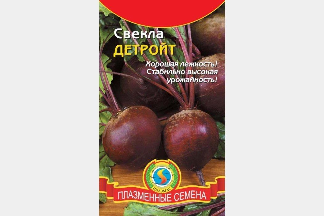 Столовая свекла — выращивание, уход, уборка, урожайность, хранение. | cельхозпортал
