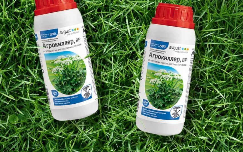 Гербицид от пырея: как избавиться, лучшие препараты и методы борьбы с сорняком