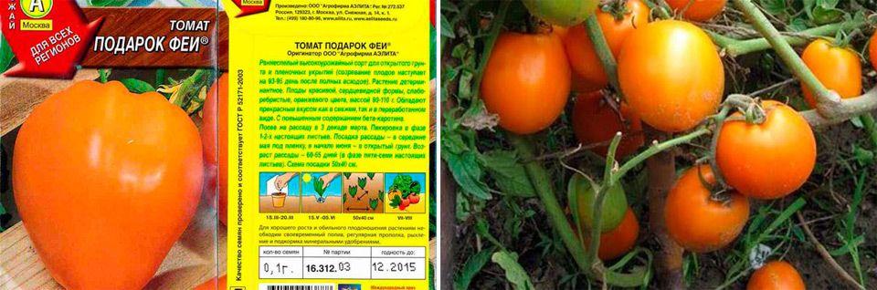 Характеристика томата сорта подарок феи - мыдачники