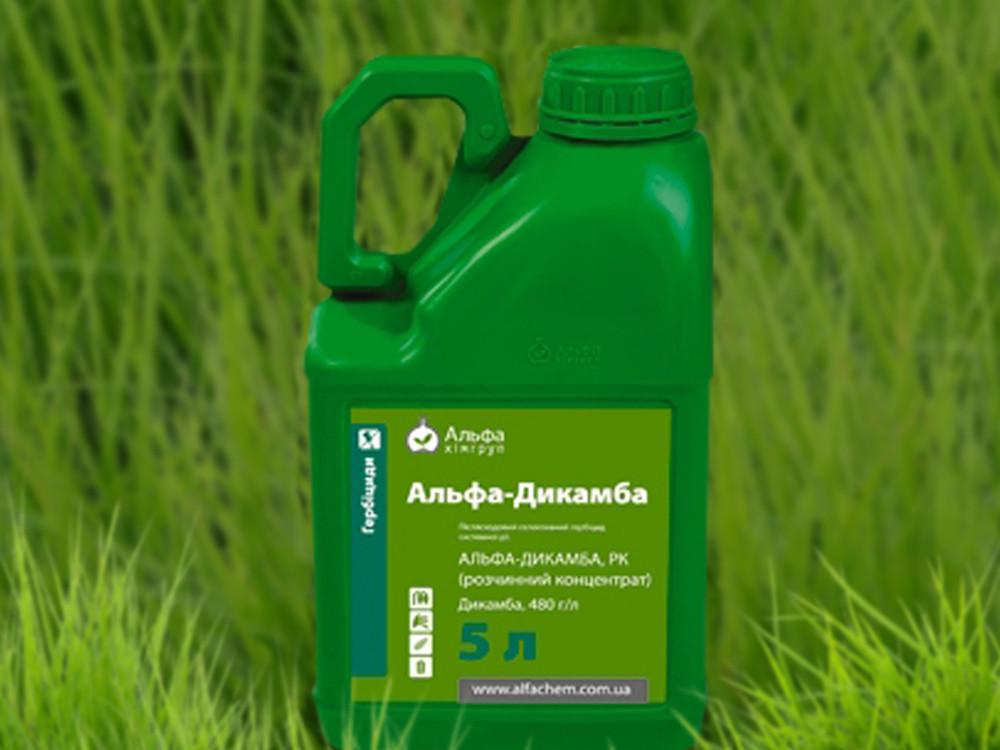 Инструкция по применению и состав гербицида бомба, дозировка и аналоги