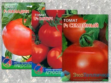 Лучшие сорта томатов для теплицы из поликарбоната для подмосковья, сибири и средней полосы россии: описание, фото, отзывы