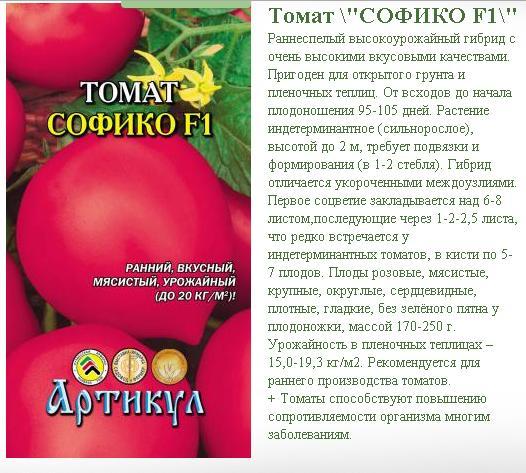 Сорт томат «розовая катя f1»: описание, отзывы, фото, урожайность