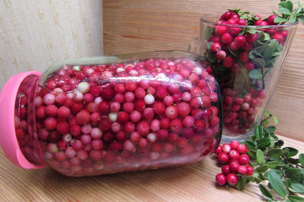 Как хранить бруснику в холодильнике и в домашних условиях, сроки хранения свежей ягоды дома