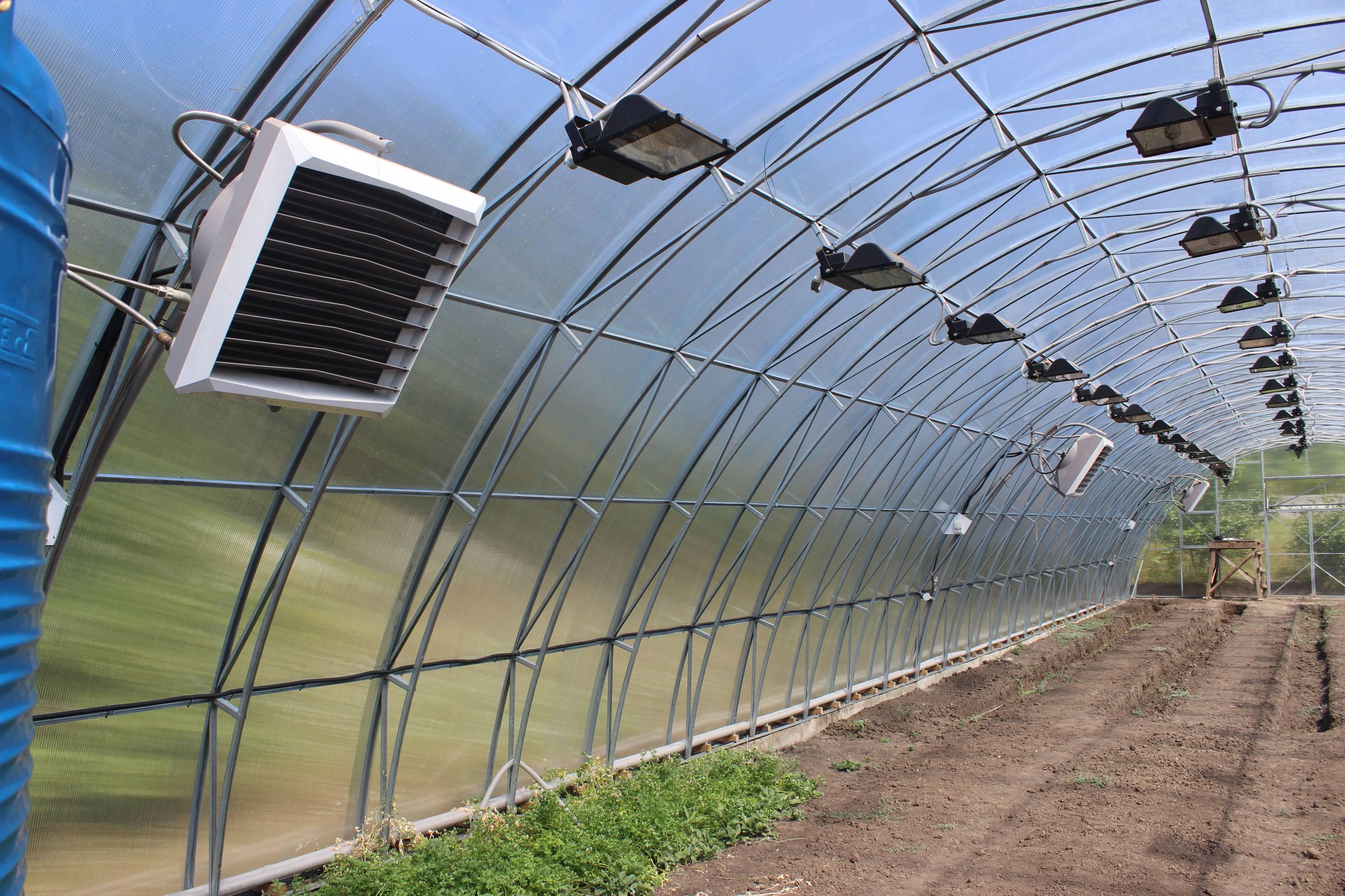 Инфракрасные обогреватели для теплицы из поликарбоната: потолочное отопление, обогрев и отзывы, газовые лампы — remont-om