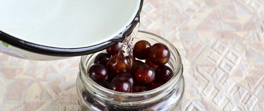 Маринованный виноград на зиму в банках: рецепт без стерилизации в домашних условиях