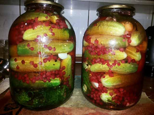 Топ 8 пошаговых рецептов приготовления огурцов со смородиной на зиму - всё про сады