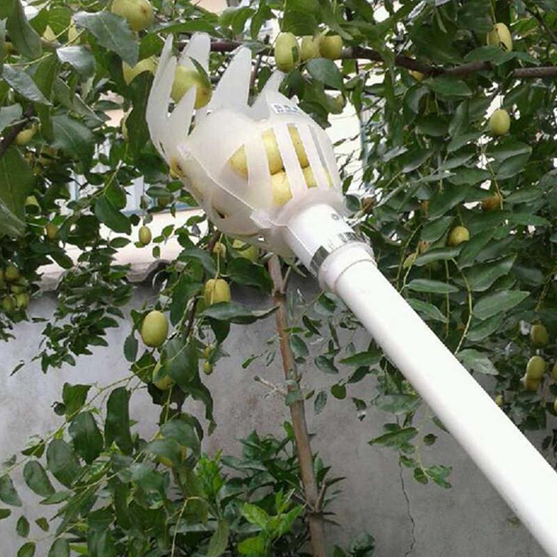 Приспособление для сбора вишни с высокого дерева: как собрать, оборвать, с верхушки приспособление для сбора вишни с высокого дерева: как собрать, оборвать, с верхушки