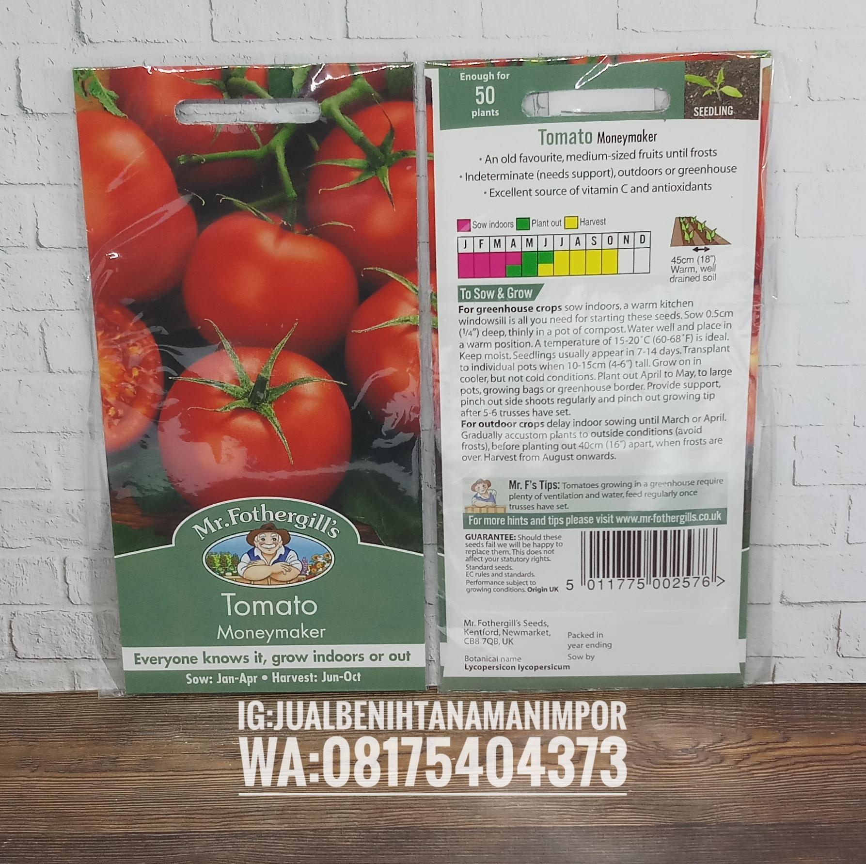 Характеристика и описание сорта томата манимейкер, урожайность и выращивание
