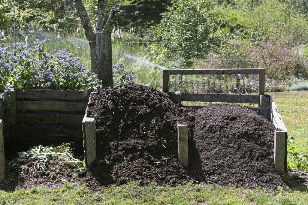 Козий навоз как удобрение: как применять в огороде, в теплице, для комнатных растений