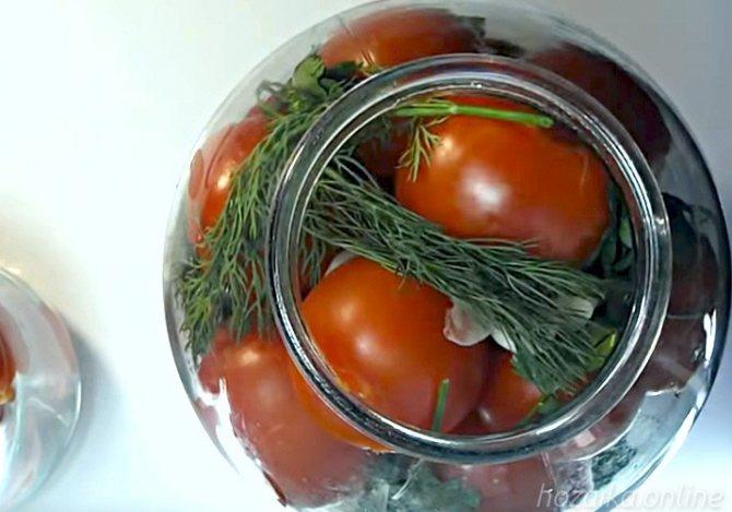 Быстрые пошаговые рецепты быстрого приготовления малосольных помидоров в пакете за 5 минут