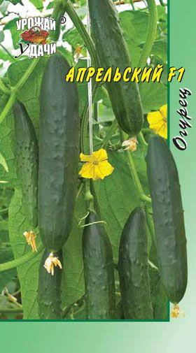 Лучшие сорта огурцов для сибири для открытого грунта: отзывы, характеристика и описание, фото, особенности выращивания