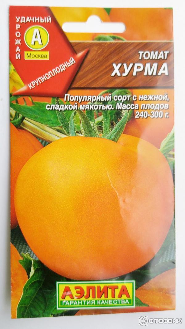 Томат хурма - характеристика и описание сорта, выращивание и уход